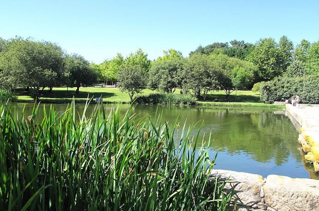 Lago no Parque da Cidade