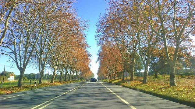 Outono em Évora