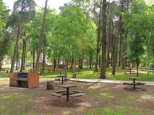 Piqueniques nos Parques de Lisboa